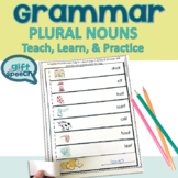 Irregular plural nouns & regular plurals Teach, Practice,