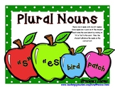 "Plural Nouns ""s and es""  Sorting Cards - Apples"