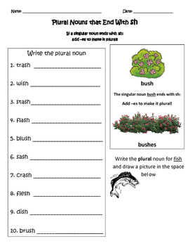 Plural Nouns that end with s, sh, ch and x Bundle