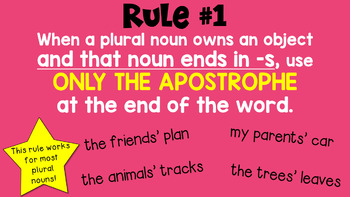 Plural Possessives PowerPoint