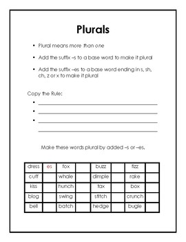 Plural Suffixes -s and -es Packet