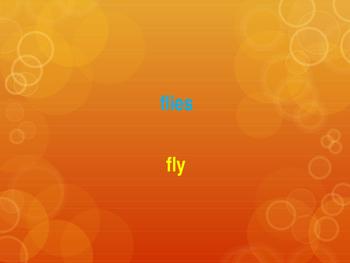 Plural Words Game (Editable)