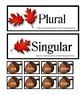 Plural Words Sort Activity Center Matching Worksheet Common Core K-3