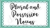 Plural and Possessive Noun Task Cards