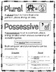 Plural and Possessive Nouns (ready-to-use practice AND craftivity)