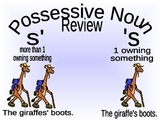 Plural and Possessive Nouns
