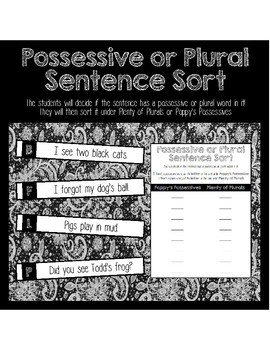Plural and Possessive Sentence Sort