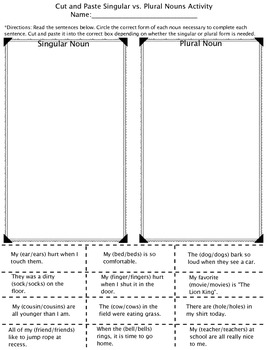 Plural and Singular Noun Pack (regular and irregular)