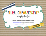 Plural or Possessive: A Poster and Worksheet