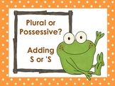 Plural or Possessive - Posters and Practice for Adding S or 'S
