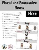 FREE Plural/Possessive Noun Poster and Worksheet