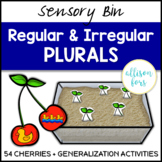 Regular and Irregular Plural Nouns Speech Therapy Sensory Bin