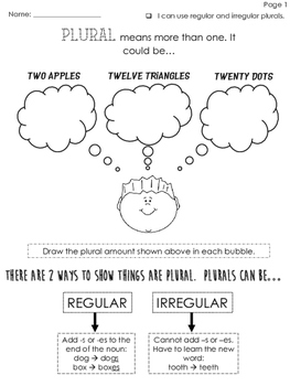Plurals Mini Lesson and Personal Anchor Chart