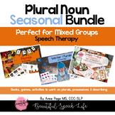 Plurals: Noun Seasonal Bundle for regular plural nouns