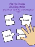Plurals Puzzle Matching Game