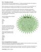 Plurals ending in Y (family-families, monkey-monkeys) Orton Gillingham Lesson