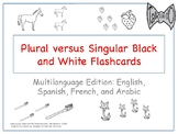 Plurals flashcards