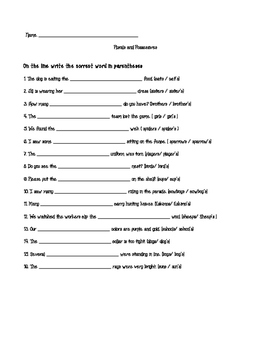 Plurals vs. Possessives Worksheet or Quiz