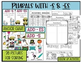 Plurals with - s and -es