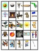 Pocket Picture Vocabulary Flash Cards 401-500