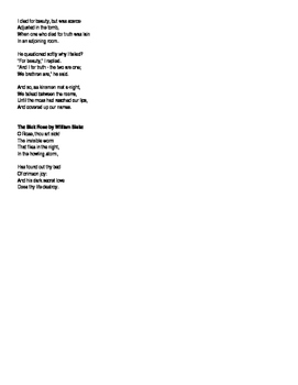 Poem Analysis assignment (poetry)