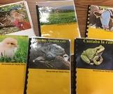 Poemas y Canciones - Spanish children's poetry and song cl