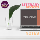 Poetic Devices Notes: Simile, Metaphor, Alliteration, Hyperbole and more