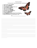 Poetic Devices Review Sheet
