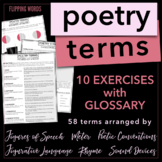Poetic Terms: Handout with Definitions & Categorizing Activities