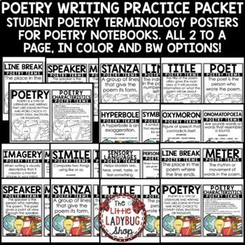 Poetry Writing Activity & Poetry Flip Book