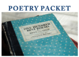 Poetry Assignments (English 9-11)-BUNDLE