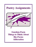 Poetry Assignments and Activities