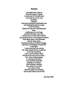 Poetry: Bugs & Roaches Poems and Reflection Worksheet