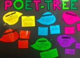 Poetry Display