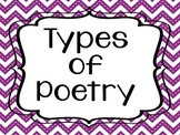Poetry Poster Pack (Chevron Theme)