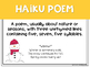 Poetry Posters (Poetry types, definitions, and examples!)