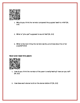 Poetry QR Code Activity 3rd Grade - Great Test Prep