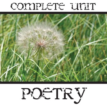 Poetry Unit Complete PowerPoint & Packet - Genres, Pun, Metaphor, Simile