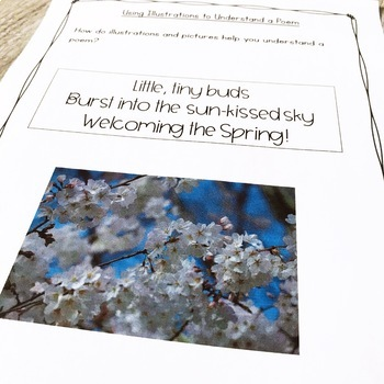 Poetry Unit - Third Grade Complete Pack (aligned with Common Core Standards)