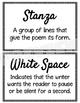 Poetry Vocabulary~ Editable