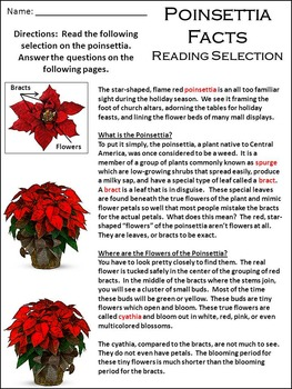 Poinsettia Activities: Poinsettia Facts Christmas Activity Packet