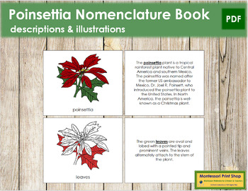 Poinsettia Nomenclature Book - Red