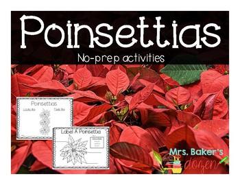 Poinsettias FREEBIE