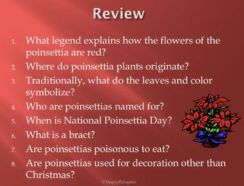 Poinsettias - Christmas Symbol PowerPoint