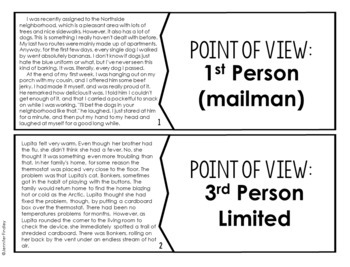 Point of View Puzzles | 4th and 5th Grade Reading Center