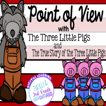 point of view of a story