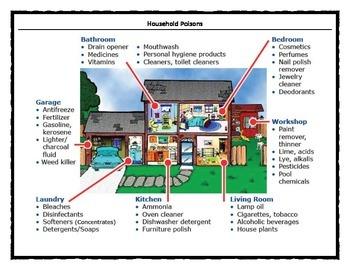Poison Alert: Household Poisons Avoid Danger Zones at Home