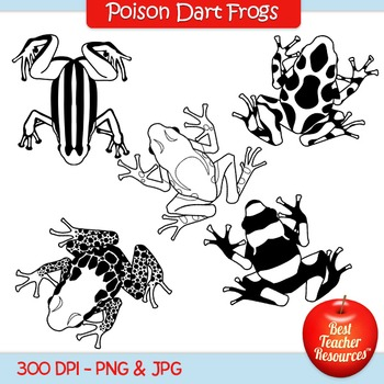 Poison Dart Frogs Clip Art