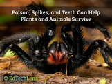 Poison, Spikes, & Teeth Can Help Plants & Animals Survive