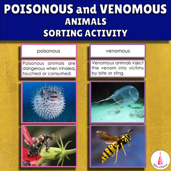 Poisonous and Venomous Animals of the World 3-part cards + description cards